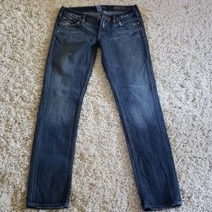 Silver Jeans Monica Skinny